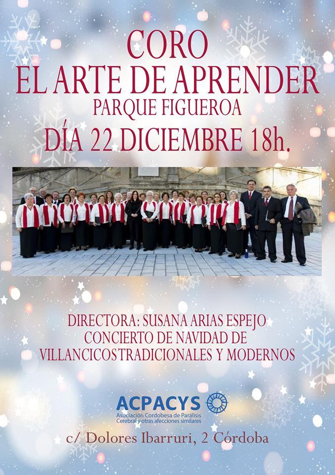 concierto de navidad villancicos